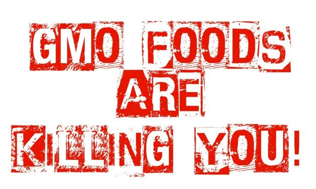 Genetically Modified Organisms (GMOs) – Are they making you Sick and Fat?